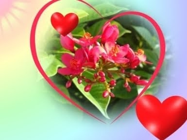 2d9ed-beautiful_love_wallpapers_collection14